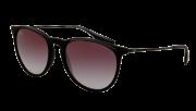Ray-Ban RB 4171 622/8G Erika Sunglasses-1