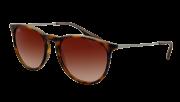 Ray-Ban RB 4171 865/13 Erika Sunglasses-1
