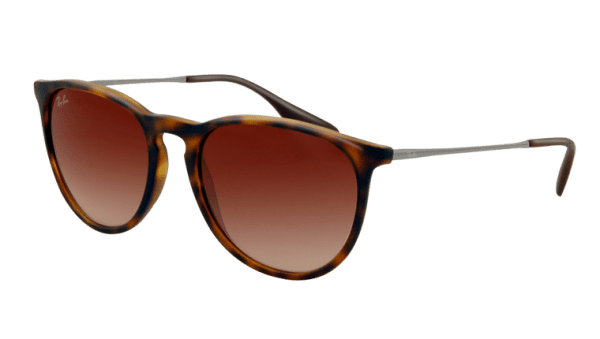 Ray-Ban RB 4171 865/13 Erika Sunglasses-1